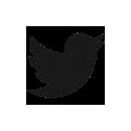 Ir a Twitter